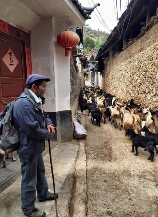 lijiang-yunnan-china-olivia-blanc-6