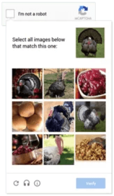 turkey_captcha
