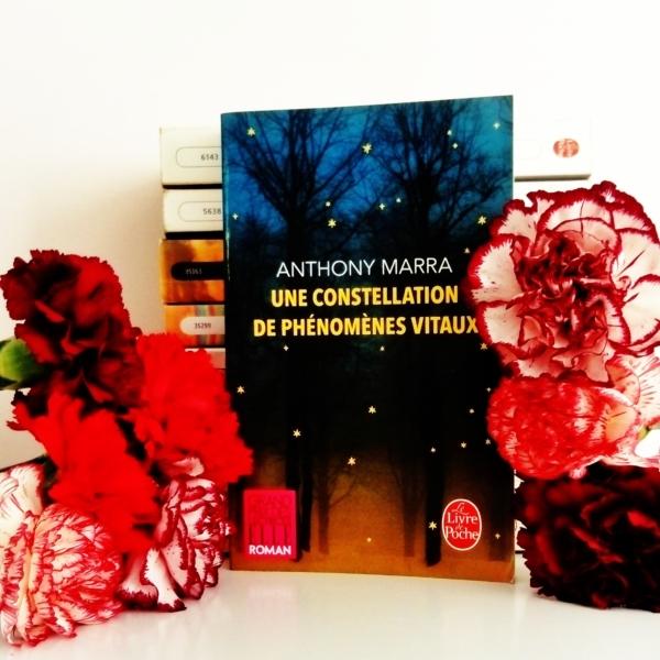 Avis de lecture sur le roman une constellation de phénomènes vitaux d'Anthony Marra