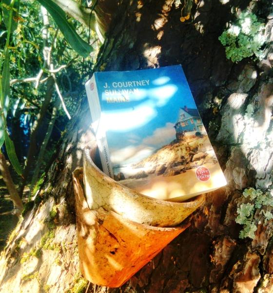Avis de lecture sur le roman Maine de J. Courtney Sullivan