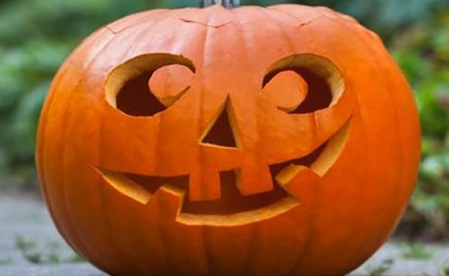 Come Fare La Zucca Di Halloween Video.Zucca Di Halloween Cute766