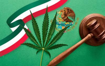 ¿YA ES LEGAL EL CANNABIS EN MÉXICO?