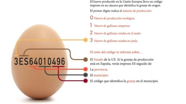 significado código impreso en la cáscara de huevo