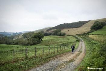 Tournée Manu Galure à pied 2017 ©Fabien Espinasse Entre Lacarre et Cambo-les-Bains- (64) Pyrénées-Atlantiques, Pays Basque
