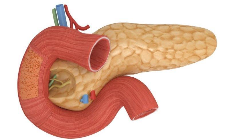 Чем можно снять воспаление кишечника
