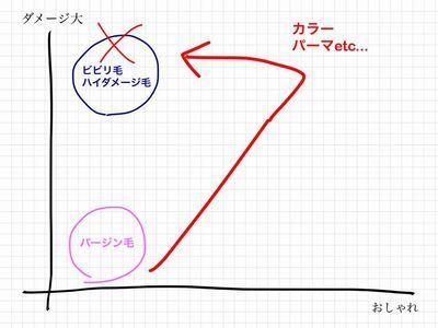 ダメージ図3