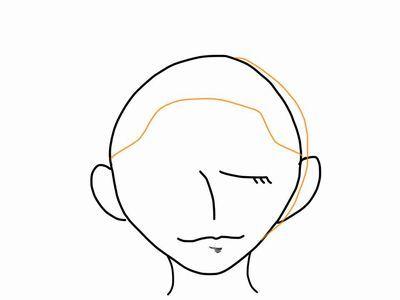 頭の形(正面)