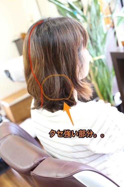 IMG_1658縮小 (2)