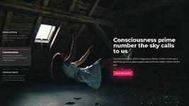 cybercarousel2.jpg