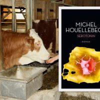 Michel Houellebecq: Serotinin
