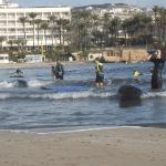 Surf_iniciación ADULTOS practica libre escurla de surf
