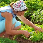 One Way You Can Keep Gardening Without the Back Pain