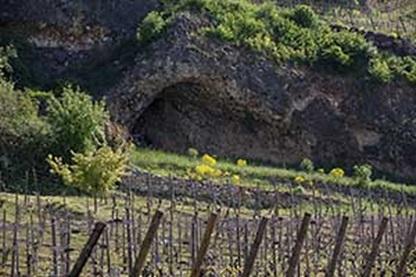 Josmeyer Alsace