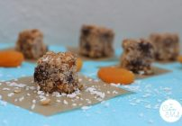 Apricot and Coconut Oat Cubes
