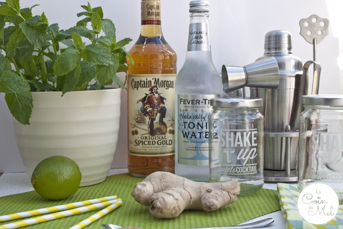 Mash up a Mojito with a Hint of Ginger - Ingredients