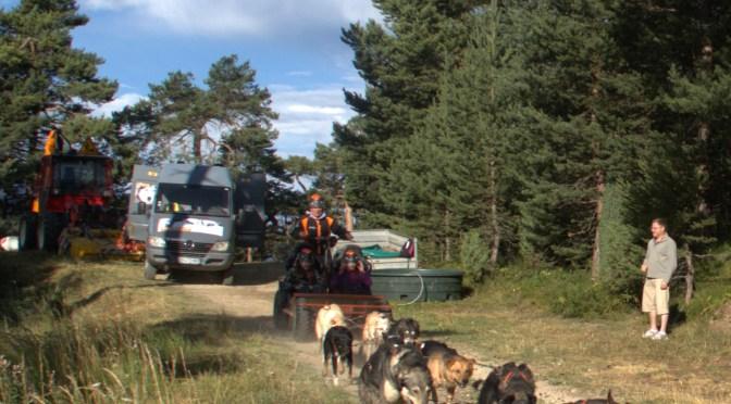 Husky-adventure recherche des mushers