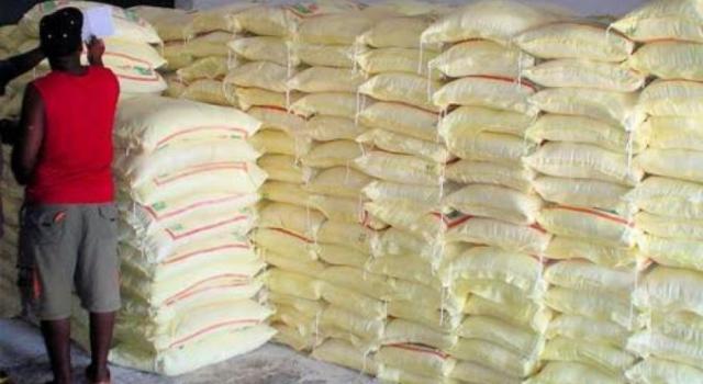Incinération de 30 tonnes de farine avariée dans la Sangha