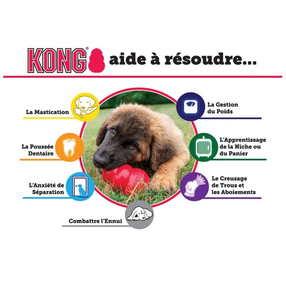 KP1E (3)