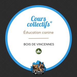 Cours collectif Aout 2021