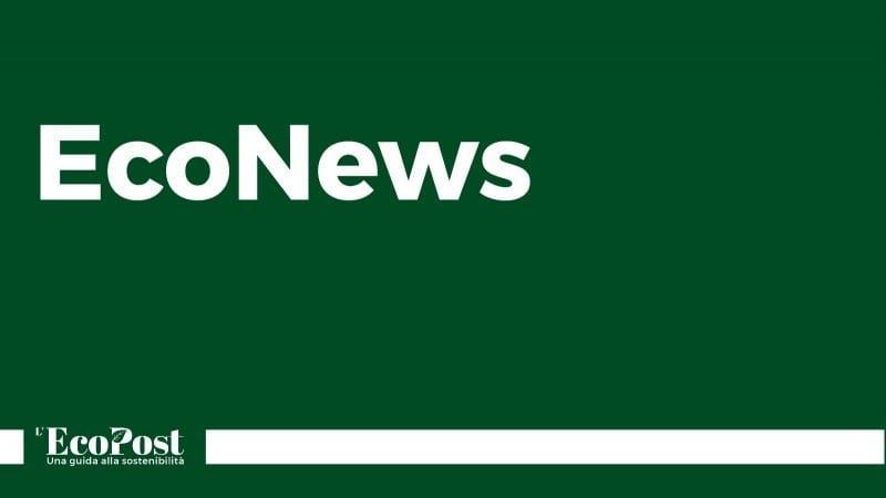 Le EcoNews: le principali notizie dell'8 maggio 2019