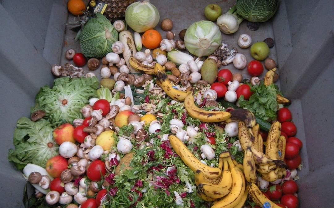 Spreco alimentare: quanto cibo buttiamo nella spazzatura?