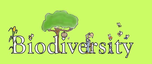 Report Onu sulla biodiversità: è tempo di cambiare rotta