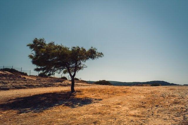 L'Italia senza acqua: siccità in Puglia, Basilicata e Sicilia