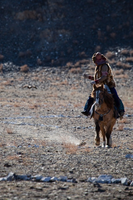The hunter (on his horse) drags a fox skin