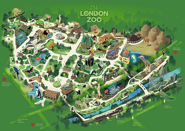 plan-zoo-londres