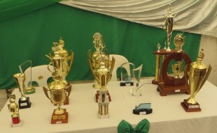 Some of the awards
