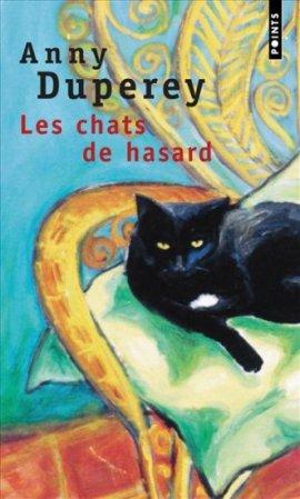 les chats de hasard 3295753 - Les chats de hasard