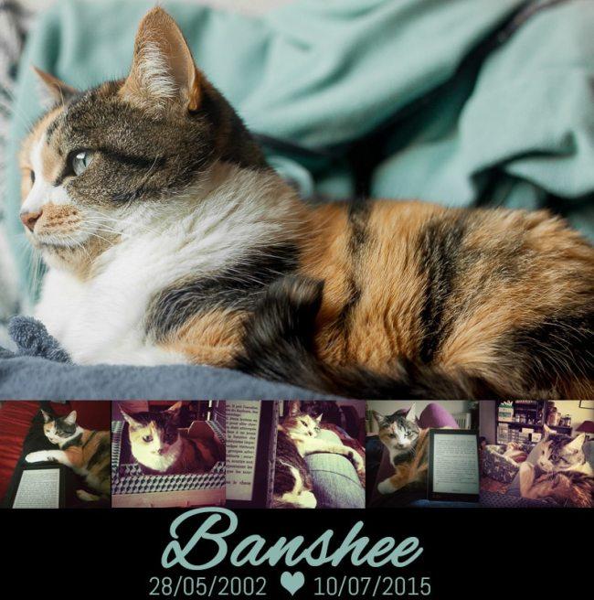 banshee1 - Banshee
