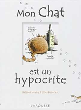 chat hypocrite - Mon chat est un hypocrite