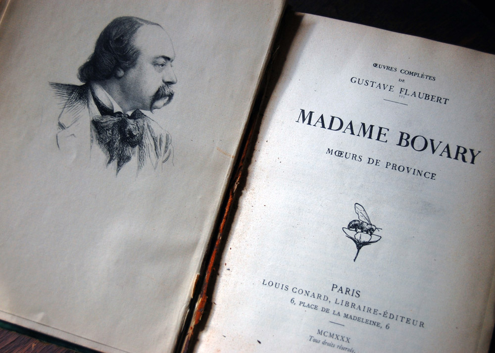 madame bovary research paper