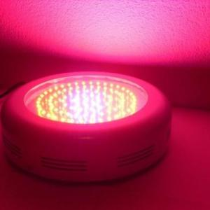 LED Grow Light UFO 90 Watt eingeschaltet in rosa Licht.