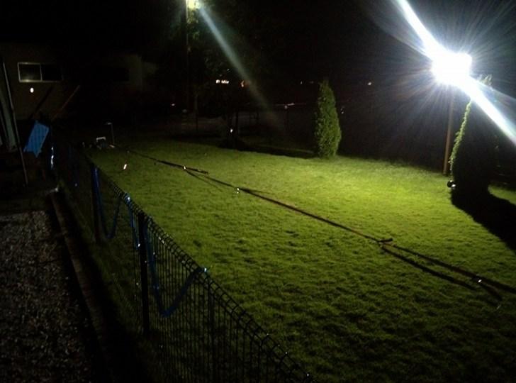 ドッグラン 投光器点灯写真