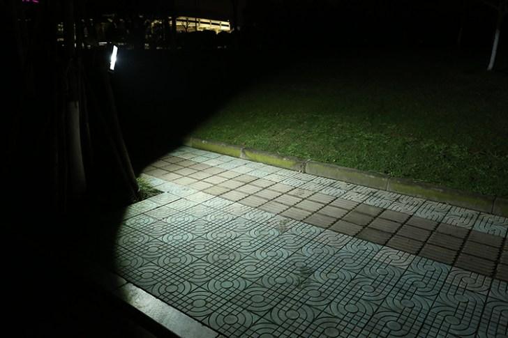 50w投光器 街路樹照射写真