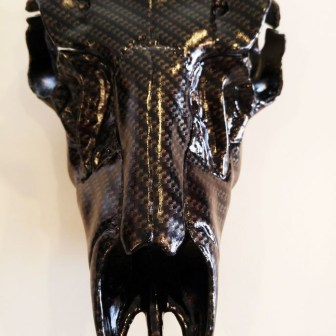 Carbon-Fiber-CF-00-22-Gold-and-Clear-True-Weave_Skull-03