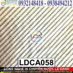 LDCA058