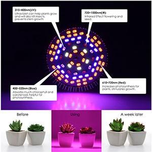 LED Grow Light Bulb05 | LED Corner