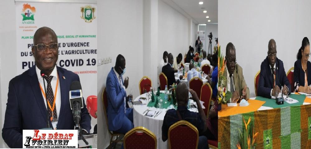 urgence agricole: l'appareil national de production agricole reste intact en Côte d'Ivoire LEDEBATIVOIRIEN.NET