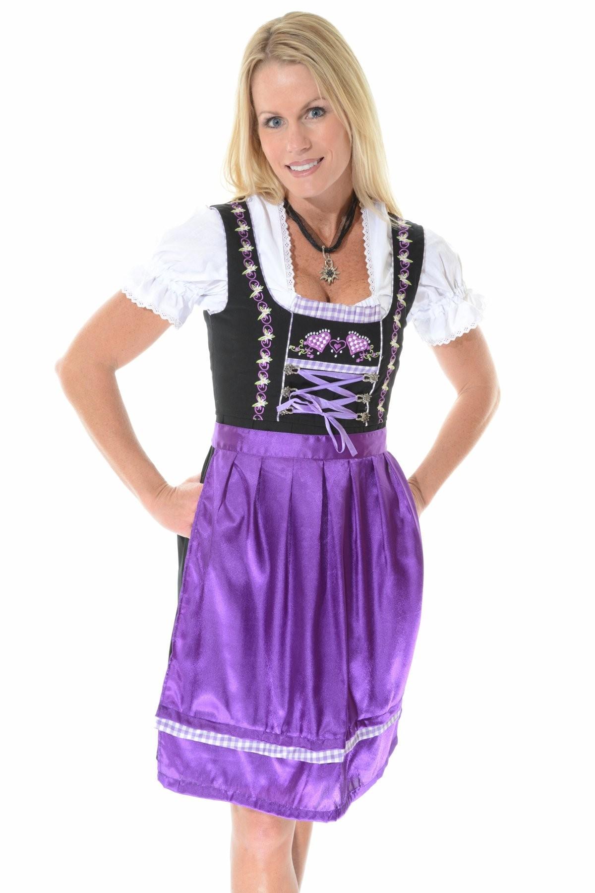 German Costumes German Dress Beer Costume Dirndl Dress