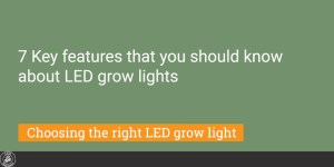 7 Key features you should know about LED grow lights