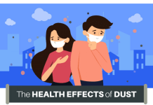 the health effects of dust on the body