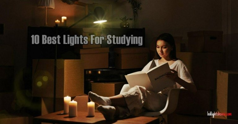 best light for studying