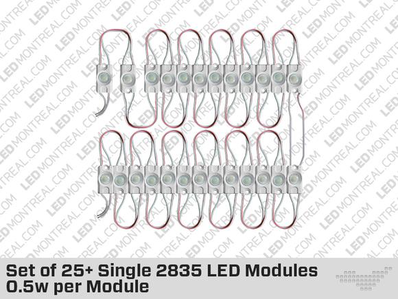 Kit de 20 Modules 2835 LED de Couleur Unique 1W par Module