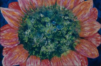 Lori Edwards, Pink Passion Galaxy , acrylic on canvas @2016