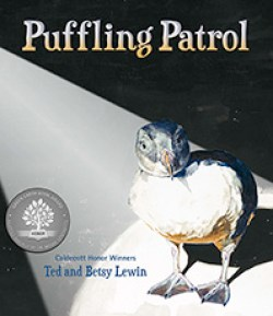 PUFFLING-PATROL