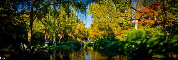 Japanese_Garden_Bridge-3