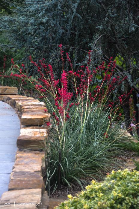 Poetry_Garden_Arboretum_Lee_Ann_Torrans-23